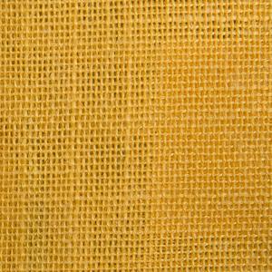 Mariposa Spectra Yellow 712