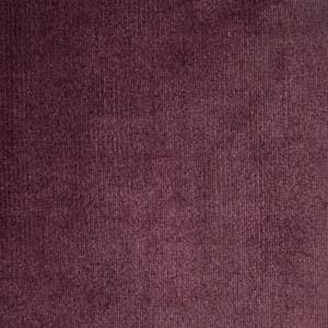 Plush 855 Purple